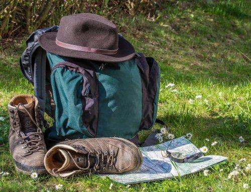Wandern mit der Aloe Vera im Gepäck